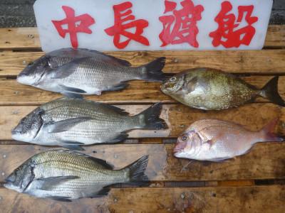 中長渡船の2020年7月22日(水)3枚目の写真
