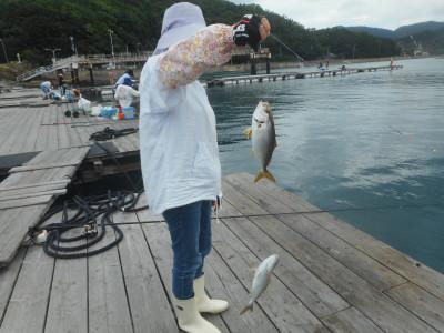 由良海つり公園&釣堀ランドの2020年7月24日(金)2枚目の写真
