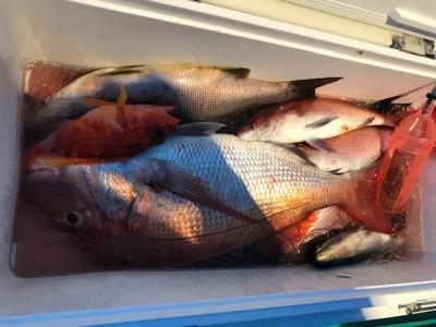 釣り船 黒潮丸の2020年8月1日(土)2枚目の写真