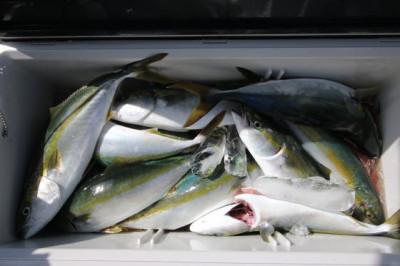 西岡遊漁の2020年7月25日(土)5枚目の写真