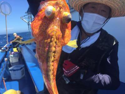 敷嶋丸の2020年8月11日(火)4枚目の写真