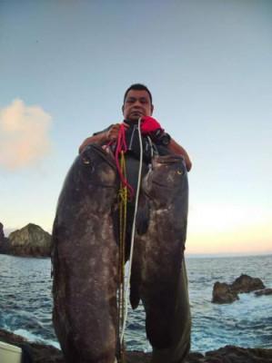鹿児島ツインバードの2020年8月14日(金)1枚目の写真