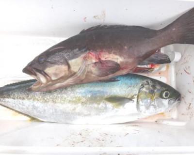 丸銀釣りセンターの2020年7月24日(金)2枚目の写真