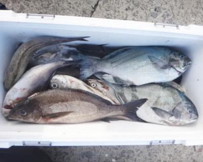 丸銀釣りセンターの2020年7月30日(木)3枚目の写真