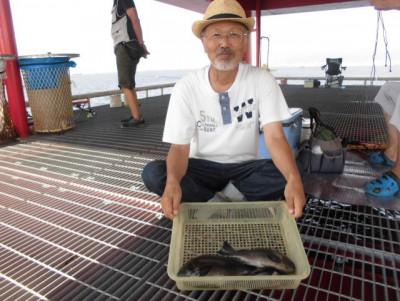 尼崎市立魚つり公園の2020年8月26日(水)2枚目の写真