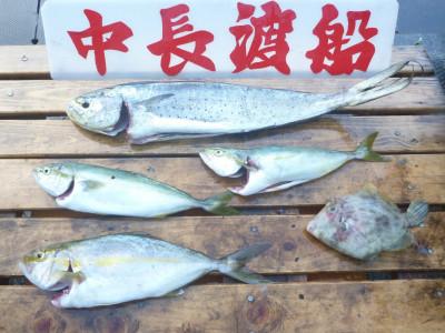 中長渡船の2020年8月28日(金)3枚目の写真