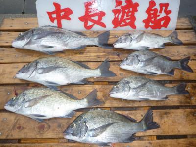 中長渡船の2020年8月29日(土)3枚目の写真