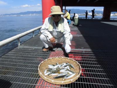 尼崎市立魚つり公園の2020年8月31日(月)2枚目の写真