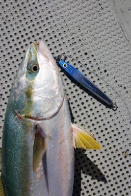 西岡遊漁の2020年8月14日(金)4枚目の写真
