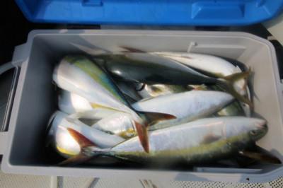 西岡遊漁の2020年8月22日(土)5枚目の写真