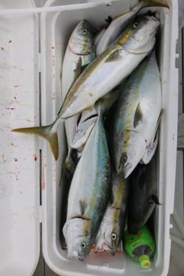 西岡遊漁の2020年9月29日(火)5枚目の写真