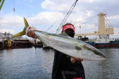 釣り船 魚英の2020年10月5日(月)2枚目の写真