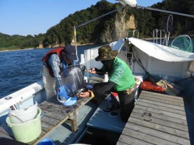 釣具の海友の2020年10月12日(月)4枚目の写真
