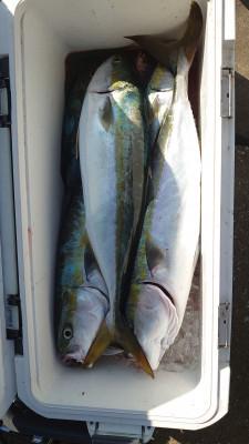 釣り船 秀進丸の2020年10月20日(火)5枚目の写真