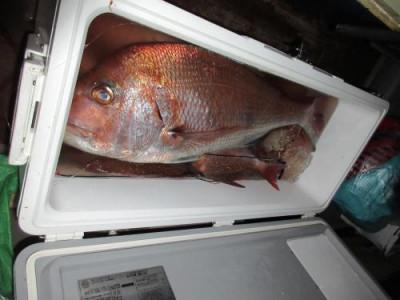 鈴木釣具店の2020年10月19日(月)3枚目の写真