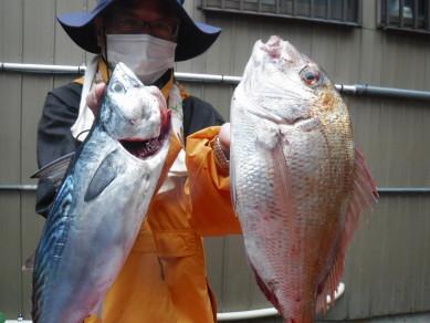 奥村釣船の2020年10月19日(月)2枚目の写真