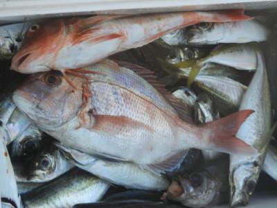 釣具の海友の2020年10月18日(日)4枚目の写真