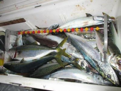 鈴木釣具店の2020年10月21日(水)3枚目の写真