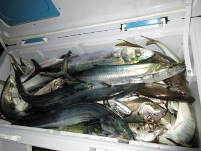 鈴木釣具店の2020年10月21日(水)4枚目の写真