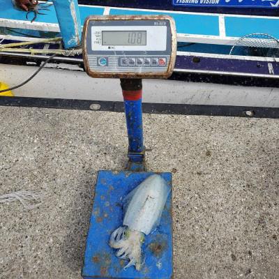 二宮丸の2020年10月28日(水)3枚目の写真