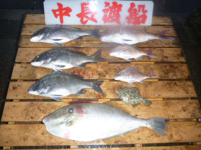 中長渡船の2020年10月28日(水)2枚目の写真