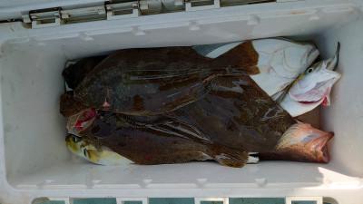 釣り船 秀進丸の2020年11月1日(日)1枚目の写真