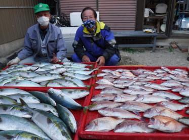 奥村釣船の2020年11月18日(水)3枚目の写真