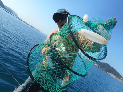 由良海つり公園&釣堀ランドの2020年11月18日(水)2枚目の写真