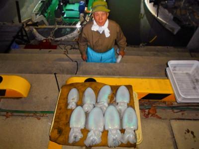 平良丸の2020年11月18日(水)4枚目の写真
