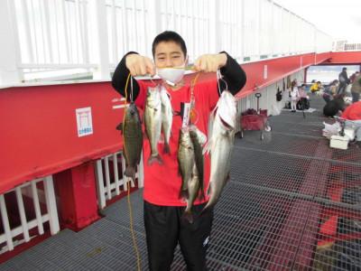 尼崎市立魚つり公園の2020年11月23日(月)2枚目の写真