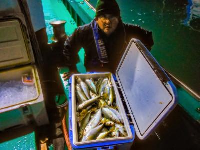 平良丸の2020年11月25日(水)1枚目の写真