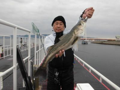 尼崎市立魚つり公園の2020年11月25日(水)1枚目の写真