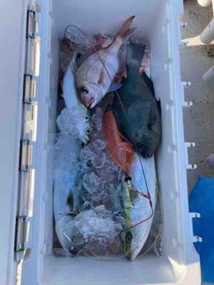 龍宮丸の2020年11月18日(水)4枚目の写真