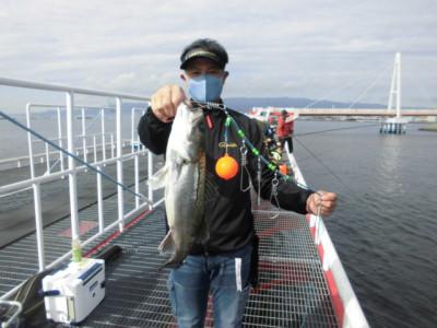 尼崎市立魚つり公園の2020年11月29日(日)3枚目の写真