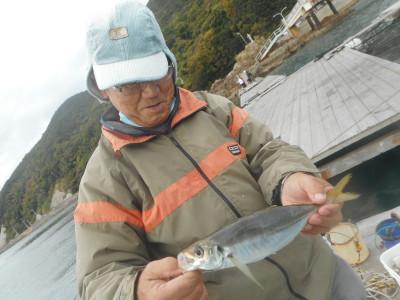 由良海つり公園&釣堀ランドの2020年11月29日(日)3枚目の写真