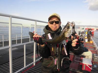 尼崎市立魚つり公園の2020年11月30日(月)2枚目の写真