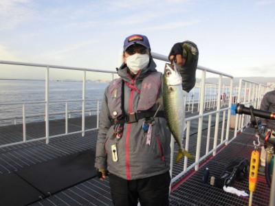 尼崎市立魚つり公園の2020年11月30日(月)3枚目の写真