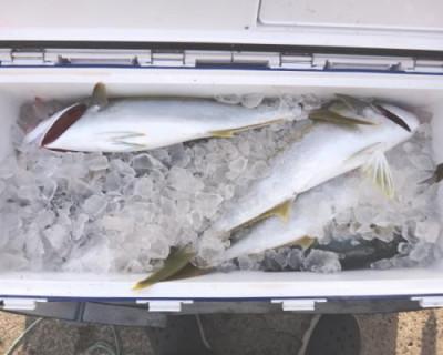 丸銀釣りセンターの2020年11月28日(土)4枚目の写真