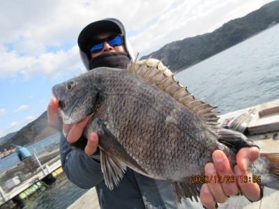 由良海つり公園&釣堀ランドの2020年12月26日(土)1枚目の写真