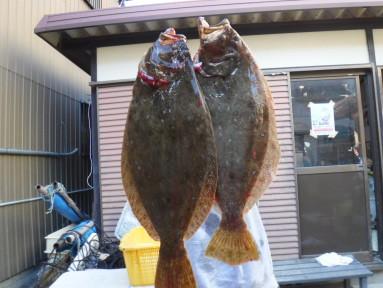 奥村釣船の2020年12月28日(月)4枚目の写真