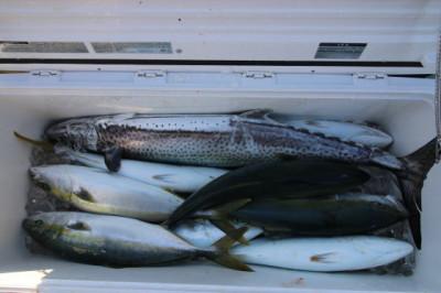 西岡遊漁の2020年12月22日(火)5枚目の写真