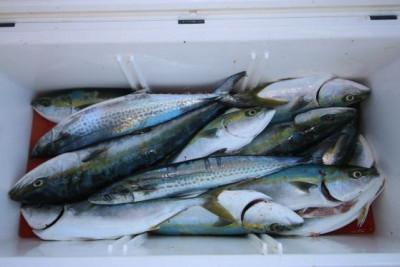 西岡遊漁の2020年12月28日(月)4枚目の写真