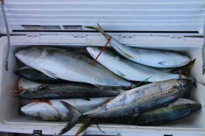 西岡遊漁の2020年12月28日(月)5枚目の写真