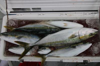 西岡遊漁の2020年12月29日(火)3枚目の写真