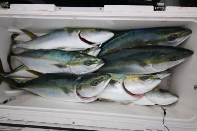 西岡遊漁の2020年12月29日(火)5枚目の写真