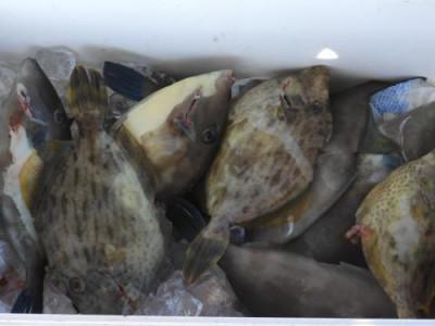 釣具の海友の2020年10月25日(日)4枚目の写真
