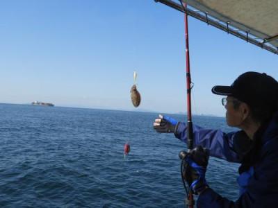 釣具の海友の2020年10月26日(月)3枚目の写真