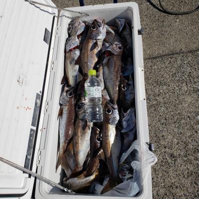 二宮丸の2021年1月20日(水)1枚目の写真