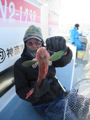 長崎屋の2021年1月20日(水)1枚目の写真