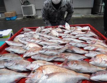 奥村釣船の2021年1月22日(金)5枚目の写真